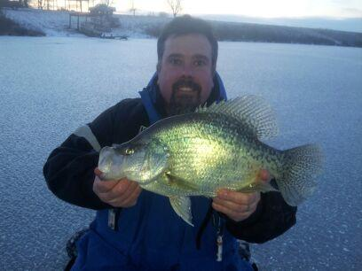 Welcome tod todd to the pro staff for Todd s tropical fish